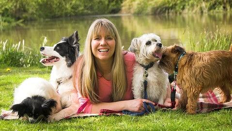 Dog Aggression - Stop Dog Attacks - Easy Dog Training Methods